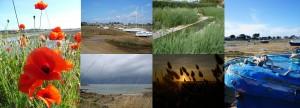 Les photos de l'Ile Grande Le rire de l'arc-en-ciel