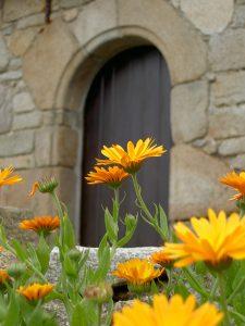 Ile Grande - Porte fleurie