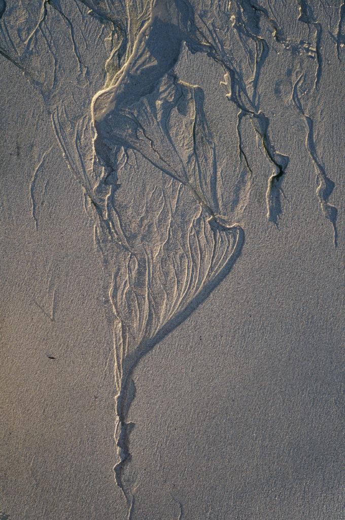Dessin de la mer qui se retire sur le sable